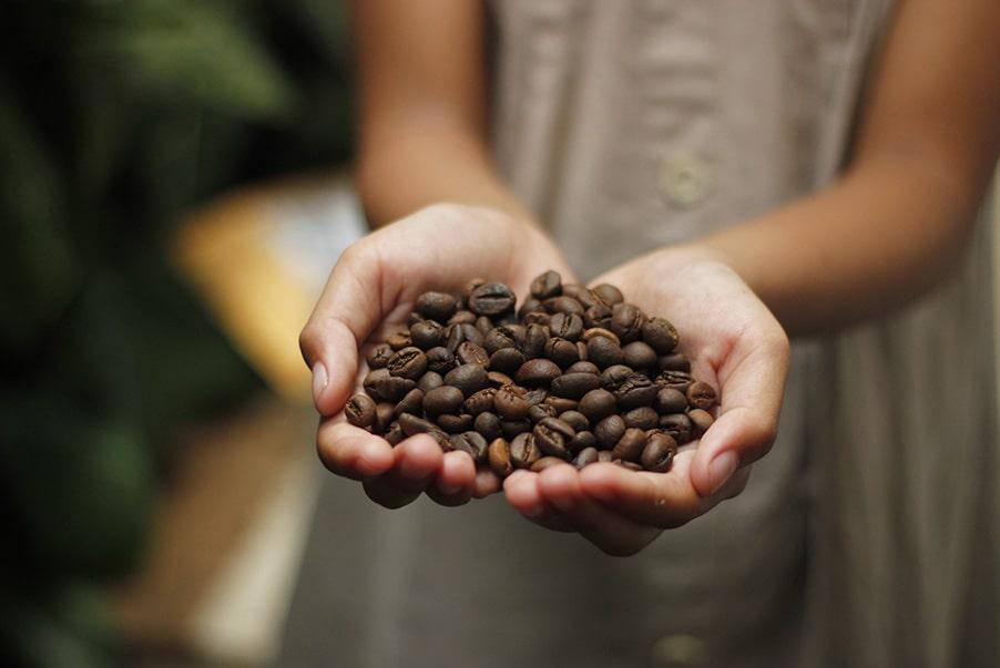 Kompostierbare Kaffeekapseln - Der Inhalt wird aus Rohkaffee hergestellt